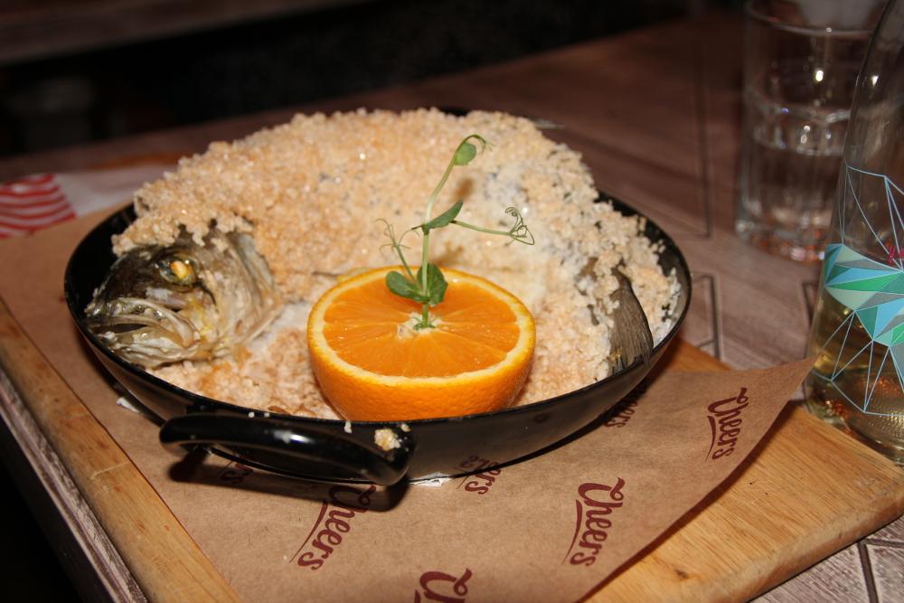 Biban în crustă de sare - Cheers