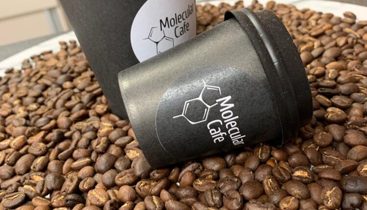 foodcrew-molecular-cafe-featured